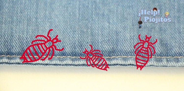 eliminar piojos de la ropa