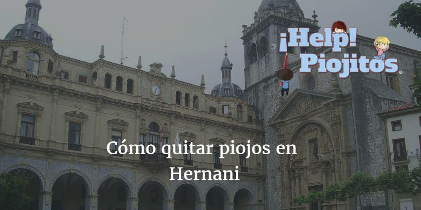 ¿Cómo puedo quitar piojos en Hernani? ¿Cuál es la mejor solución?