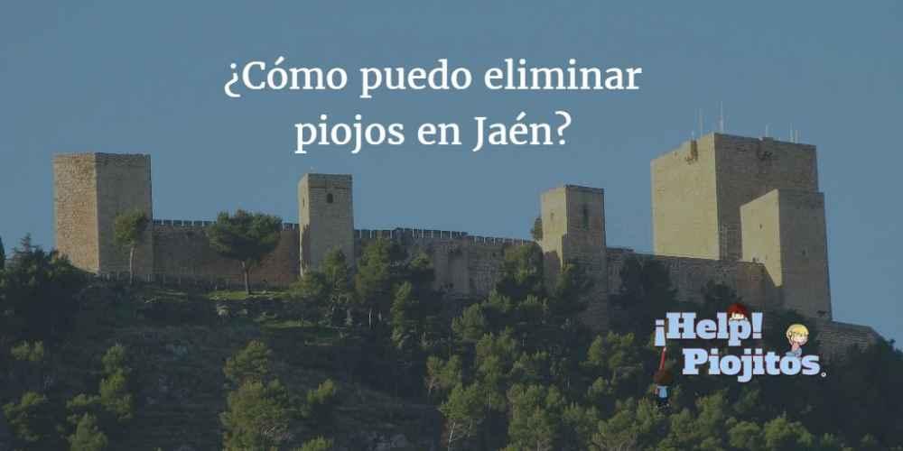 ¿Qué soluciones tenemos en Jaén para eliminar piojos?