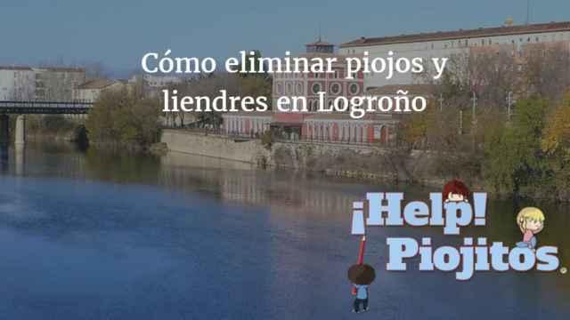 ¿Qué puedo hacer si tengo un problema de piojos y liendres en Logroño?