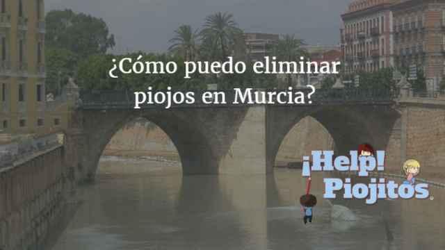 ¿Qué puedo hacer si tengo piojos en Murcia?