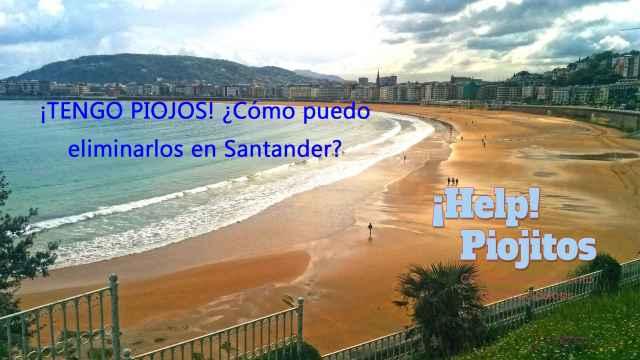 ¿Cuál es la mejor solución contra los piojos y liendres en Santander?